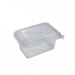 Pote 500ml Tr Rioplastic Retg C/24 T.art Freezer